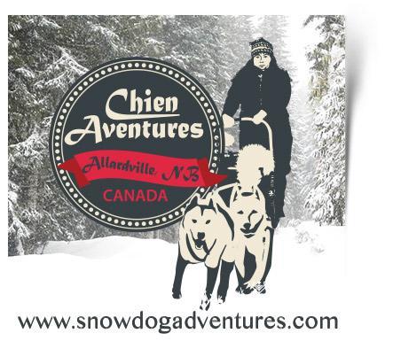 Visitez Chien Aventures pour des excursions en traîneau à chiens.